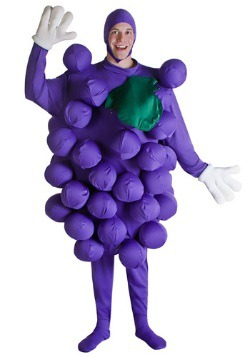 Purple Grapes Mens Costume