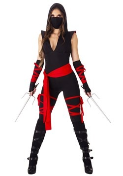 Sexy Deadly Ninja Womens Costume