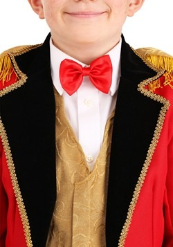 Child Ringmaster Costume Alt 1