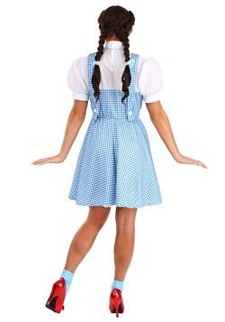 Adult Dorothy Costume Alt 7