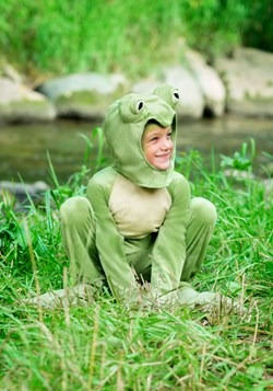 Toddlers Deluxe Frog Costume
