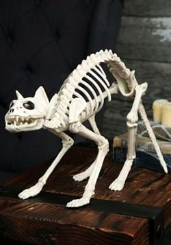 Decoration Halloween Skeleton Cat