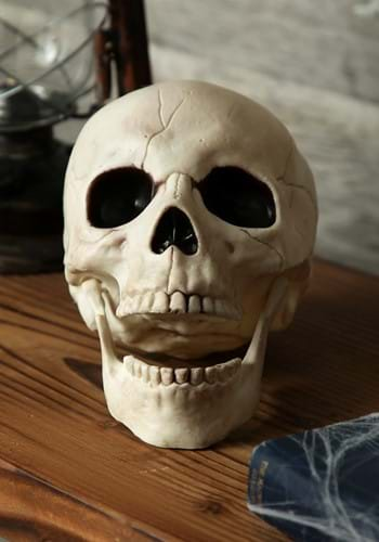 Movable Jaw Skull