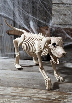 "Beagle Bonez 20"" Skeleton Dog Update"