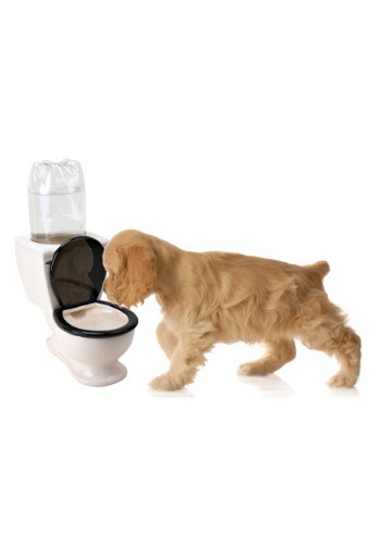 The Toilet Pet Water Dish