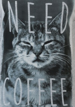 Kitty Needs Coffee Juniors Ringer Racerback Tank1