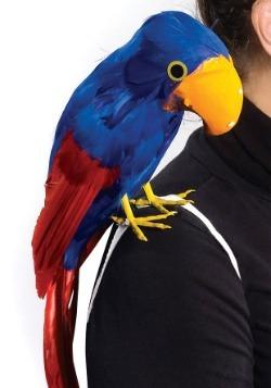 Pirate Parrot Bird Accessory2