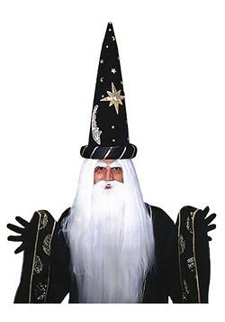 Wizard Wig and Beard Set