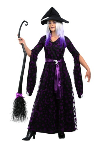 Purple Moon Witch Women's Plus Size Costume