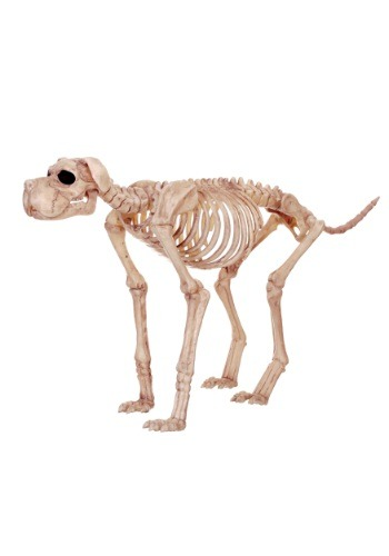 Bruiser Bonez the Skeleton Dog Decoration