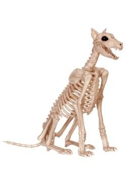 Spike the Dog Skeleton