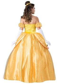Adult Beautiful Princess Costume