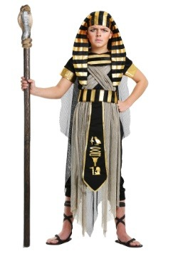 Boys All Powerful Pharaoh Costume