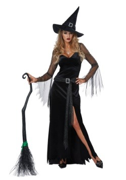 Rich Witch Womens Costume