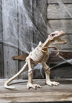 "16"" T-Rex Skeleton Decoration Update"