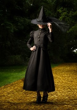 Kids Deluxe Witch Costume Alt 2