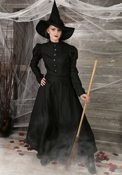Women's Witch Plus Size Costume