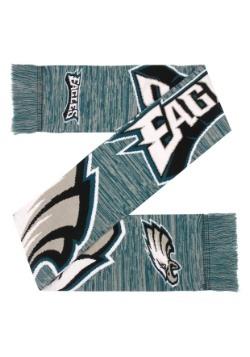 Philadelphia Eagles Wordmark Big Logo Colorblend Scarf Alt2