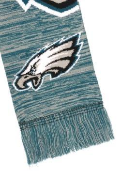 Philadelphia Eagles Wordmark Big Logo Colorblend Scarf Alt3