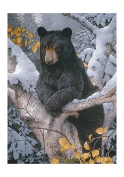 Black Bear 1000 Piece Cobble Hill Puzzle