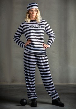 Striped Prisoner Women's Costume