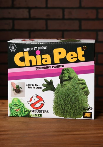 Ghostbusters Slimer Chia Pet