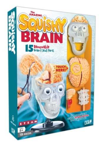 SmartLab Toys The Amazing Squishy Brain