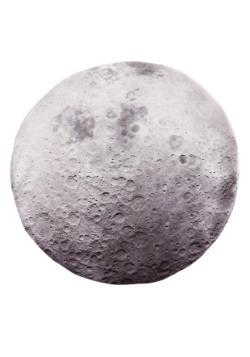 "Photo Realistic Moon 18"" Round Pillow Case"