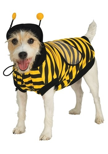 Pet Costume Bumble Bee