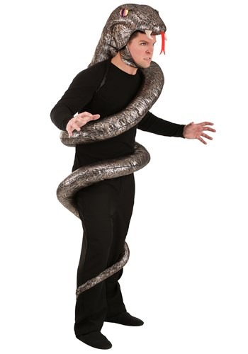 Adult's Slither Snake Costume