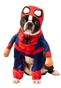 Pet Spider-Man Costume