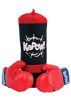 Punching Bag & Gloves