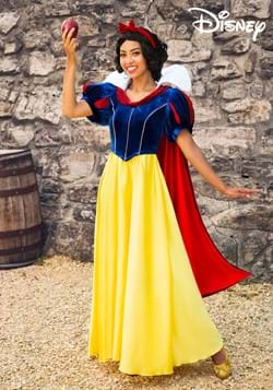 Womens Disney Snow White Costume