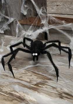 Black Spider Prop-1